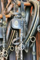 Bridles and other tack line a stable wall.
