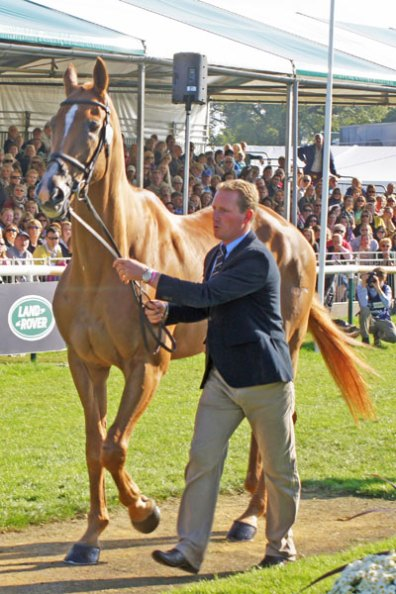 Oliver Townend with Armada (GBR)