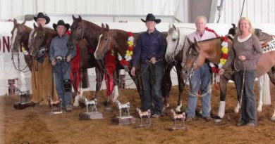 This picture of 2011 national and reserve champions appeared in the April 2012 issue of Arabian Horse World, It shows Johnny Nitro. third from left, and Quintessa, third from right.