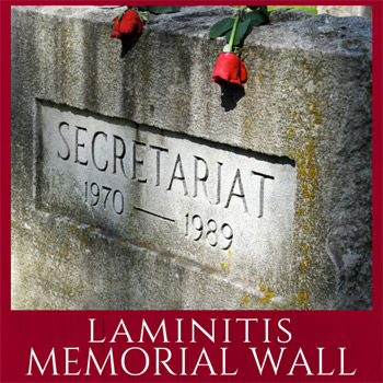 """The grave of Secretariat, perhaps the most famous of horses to succumb to laminitis. The AHF ran a """"memorial wall"""" where owners could pay tribute to their horses."""