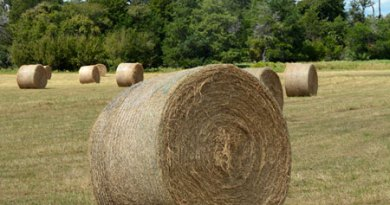 Care is needed when storing round bales of hay.