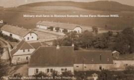The breeding farm at Hostau.