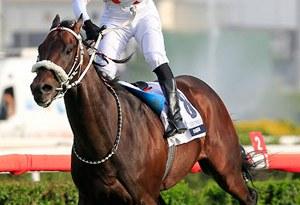 Turkish 2000 Guineas winner My Baskan with jockey Selim Kaya.