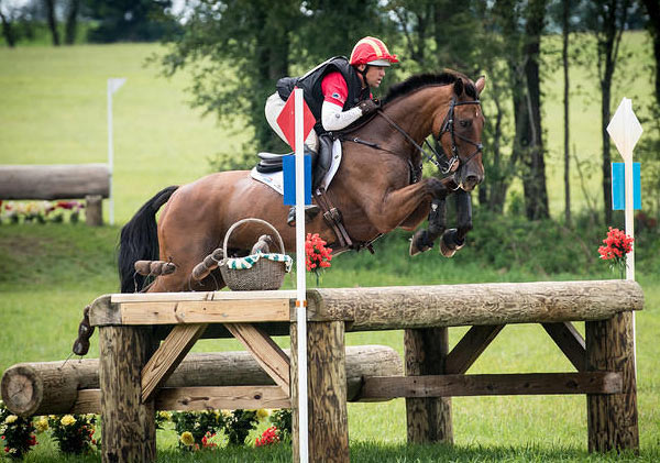 Buck Davidson and Ballynoe Castle RM won the CIC 3* at Richland Park Horse Trials.