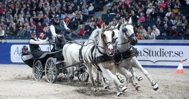 IJsbrand Chardon won the third FEI World Cup Driving leg on Sundayat the Swedish International Horse Show in Stockholm.
