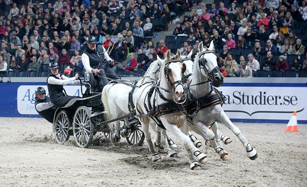 IJsbrand Chardon won the third FEI World Cup Driving leg on Sunday at the Swedish International Horse Show in Stockholm.