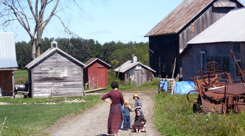Amish farm children at home on the outskirts of Morristown, New York, in August 2011. Photo: ilamont.com CC BY 2.0 via Wikimedia Commons