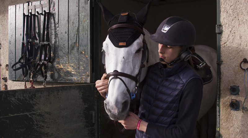 The in-ear device used in the study was specially designed for horses by the company HorseCom. Photo: HorseCom