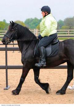 heavy-rider5