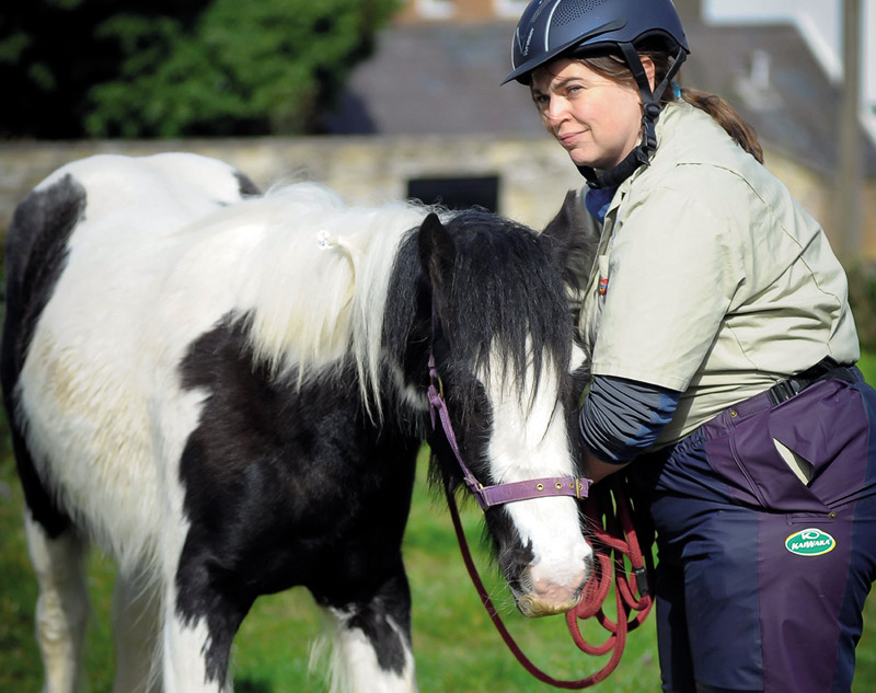 Early diagnosis can be critical to the successfully resolving colic cases in horses. Photo: University of Nottingham