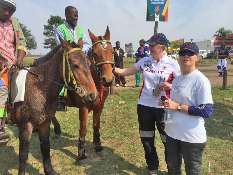vets-horsepower_2459