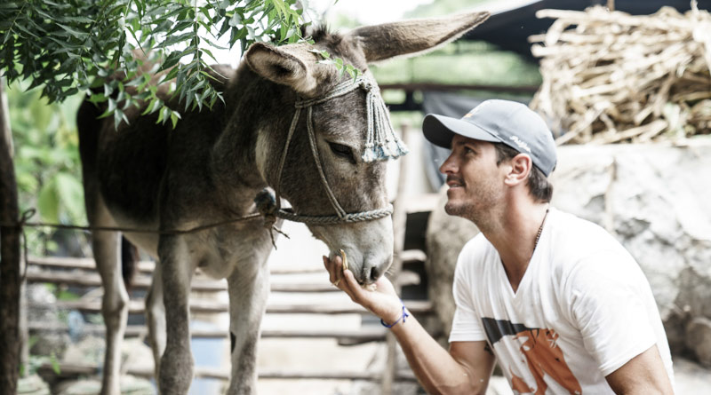 Nic Roldan and a working donkey in Guatemala. and a working donkey in Guatemala.