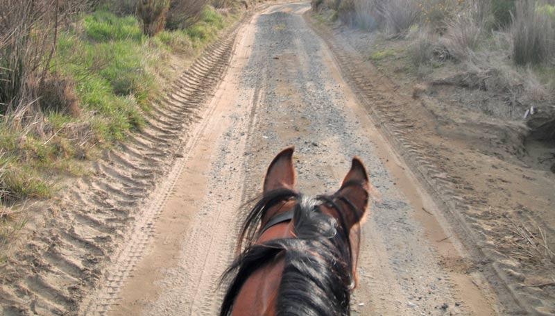 endurance-trail