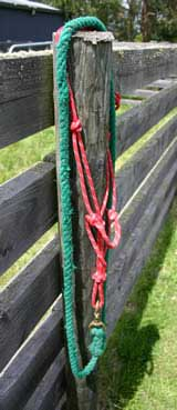 Halters and leadropes do not belong over a fence. Keep them locked away unless in use.