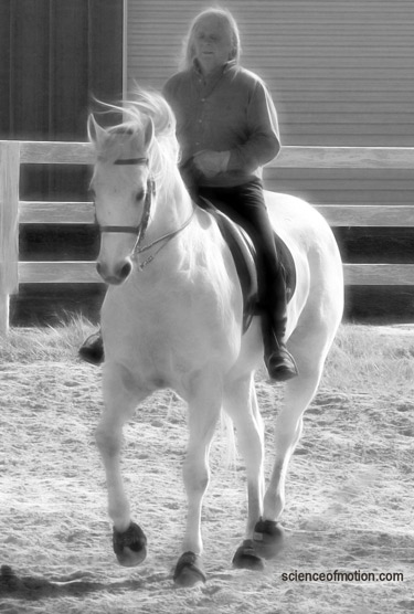 """Dressage is an education, not a crucifixion."" _ Jean Luc Cornille"