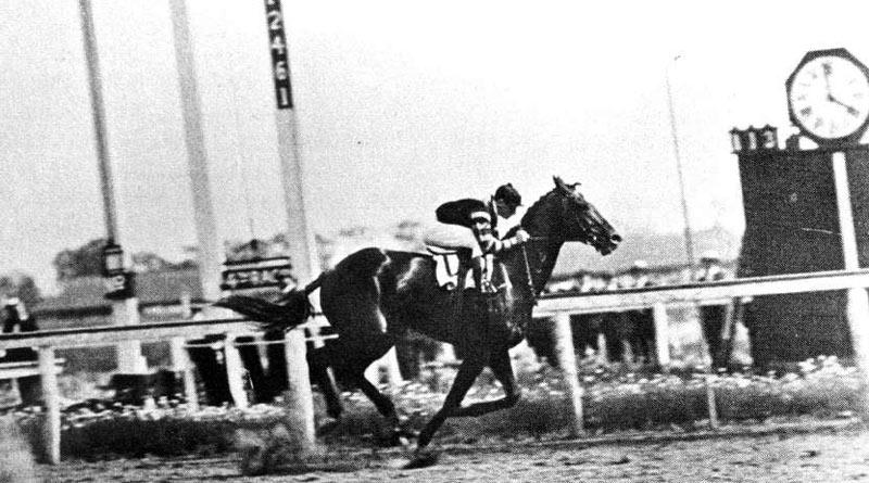 Man o' War in the 1920 Stuyvesant Handicap.