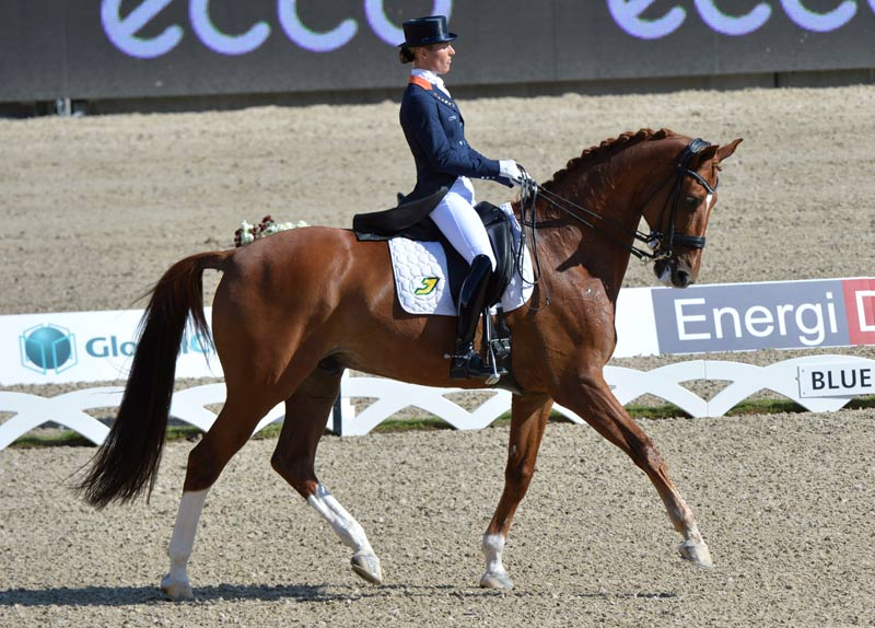 Parzival and Adelinde Cornelissen at the 2013 FEI European Dressage Championships, in Denmark.