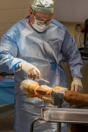 PBEC surgeon Dr Robert Brusie estimates that he repairs between30 and 50 condylar fractures per year.