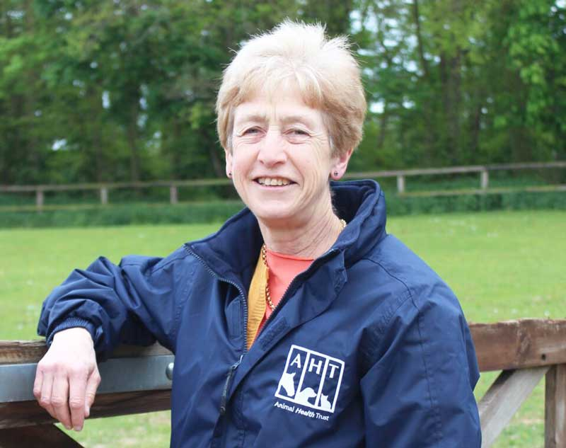 Dr Sue Dyson has led a pilot study that explores the effects of rider weight on horses. Photo: Animal Health Trust