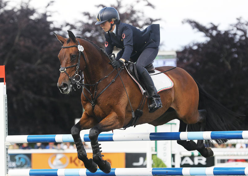 game jumped a clear round to win the Irish Field CCI3* at Tattersalls.