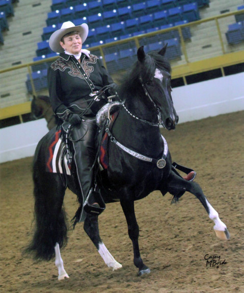 Sharon La Pierre and Esplendor showing in western pleasure in 2010.