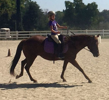 Bella's family is thrilled that she is well again, and able to be ridden.