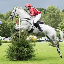 Paul Tapner and Bonza King of Rouges winning Hickstead's MS Amlin Eventers' Challenge on Thursday. © Sian Hayden