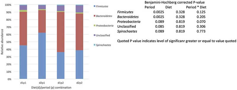 The effect of time (p: period 1 vs. period 2, 6 weeks apart) and diet (d: diet 1 = hay plus chaff diet, diet 2 = hay plus balancer) on the relative abundance (%) of bacterial phyla making up the core microbiome (defined by being present in all samples (each animal/diet combination) included in the study and being present at 0.1% relative abundance or greater,) in equine feces. Image: Dougal et al. doi: 10.3389/fmicb.2017.01502