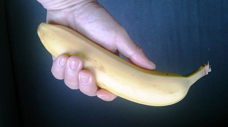 Bananas are known to be an equine favorite.
