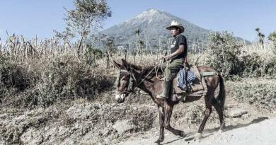 A farmer and his mule in Guatemala.