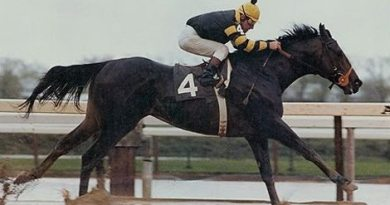 Seattle Slew (1974-2002)