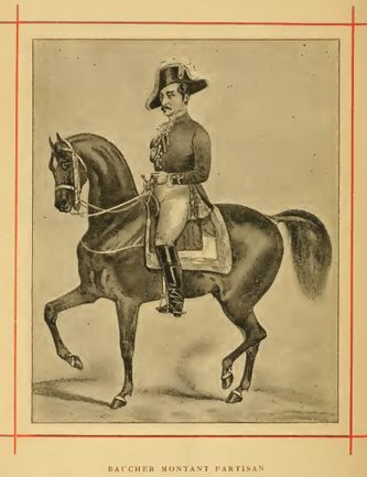 Frontispiece of Faverot's Cheval de Selle.