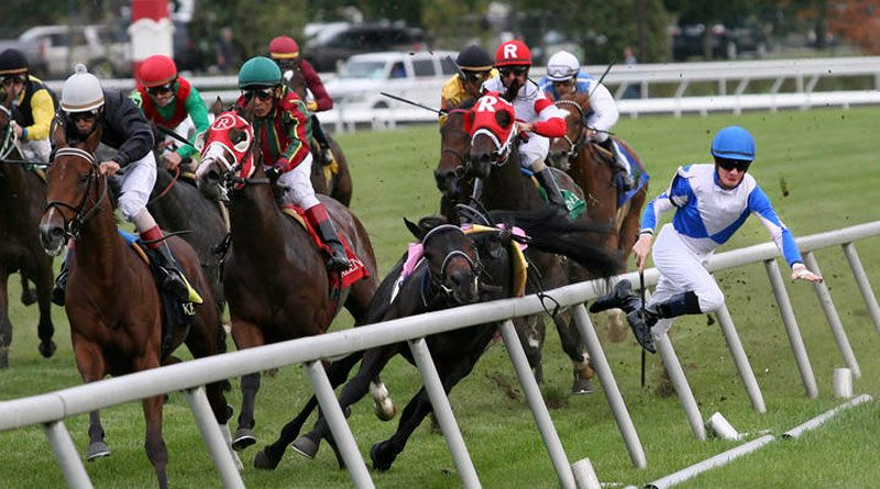 """""""The jockeys know it's a dangerous sport, but we're trying to make sure they're in a safe racing environment."""" – Terry Meyocks of the Jockeys' Guild."""