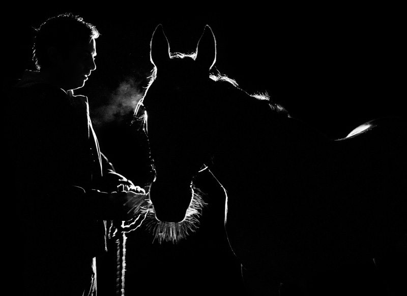 """Dark Spirit"": This image was shortlisted in the professional photographer's section of the FEI Solidarity World Photo Grand Prix."