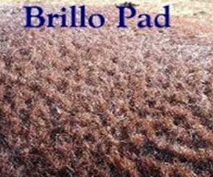 "Micro curls, or ""Brillo Pad"" curls are tight, short, and course. They make up the body coat in horses with Curly Jim homozygous inheritance."