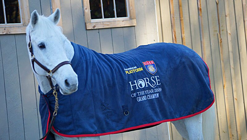 Eurostar models Sapphire's 2009 Farnam Platform USEF Horse of the Year cooler.