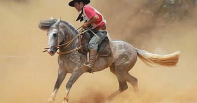 A gaucho rides a native Criollo horse. Photo by Comparceiro (originally posted to Flickr as ABRINDO TÓCA) CC BY-SA 2.0 via Wikimedia Commons