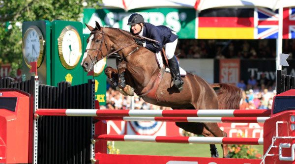 Some Equus caballus owners could hold out overlooking the merits of mares as well as fillies Gender bias could hold out harming the prospects of mares, researchers find