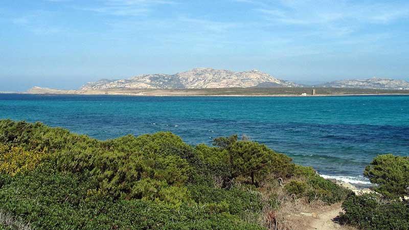 Asinara Island, viewed from Stintino beach. Photo: Markus Braun, public domain, via Wikimedia Commons