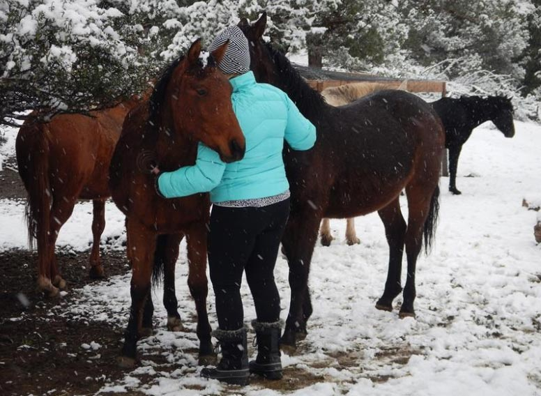 Laura Simpson getting a hug from a mamma-mare and her filly.