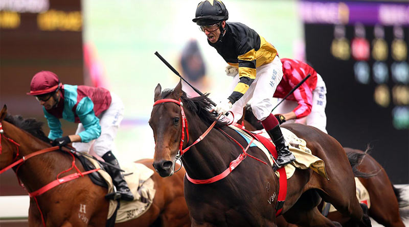 D B Pin winning the Centenary Sprint Cup at Sha Tin Racecourse in Hong Kong in January.