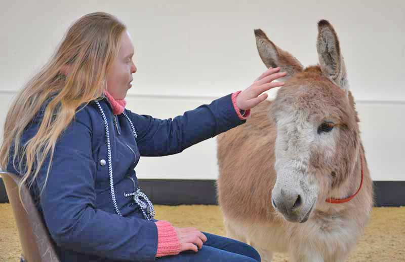 Emily and Juniper have formed a special bond. Photos: The Donkey Sanctuary