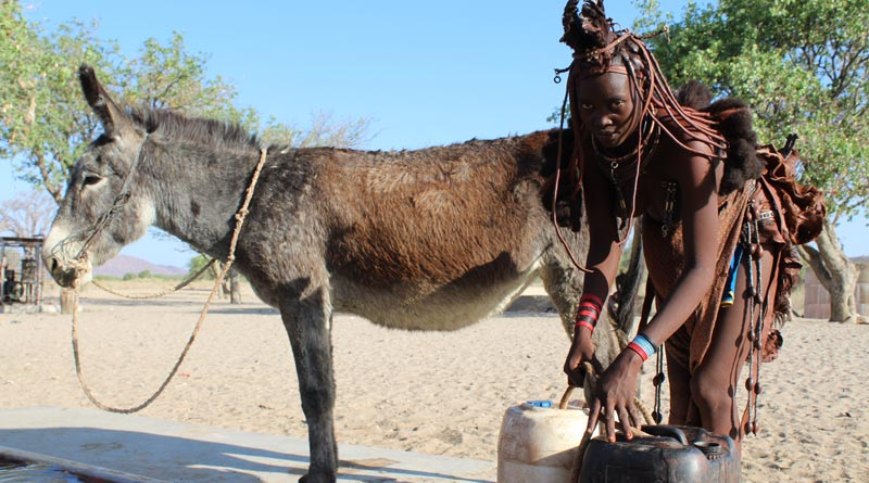 Kerirorere Muharukwa and Dendu at a water collection point. ©The Donkey Sanctuary