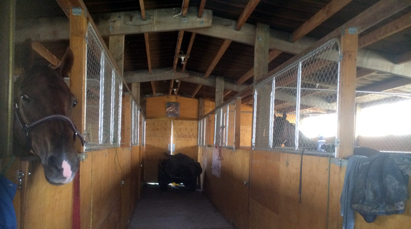 A horse being confined for a long time deserves the best stall. The larger the better.
