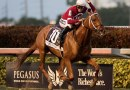 OTTBs to play part in new DNA test to identify racehorse fracture risk