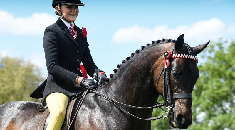 Walton Highwayman, owned by the Queen and ridden by Kinvara Garner, won the Part Bred and Anglo Arab Championship at Royal Windsor Horse Show this week.