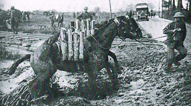Pack horses in the First World War. Horses coped with deep mud much better than trucks. From Horses in the British Army, 1750-1950.