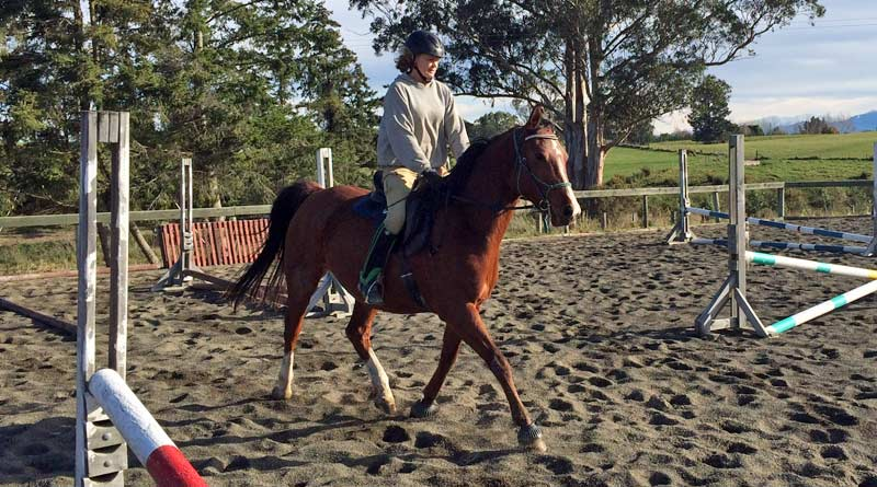 """""""As the horses trotted effortlessly, and therefore at ease, they started taking initiatives to find the right cadence, balance and lightness on their own."""""""