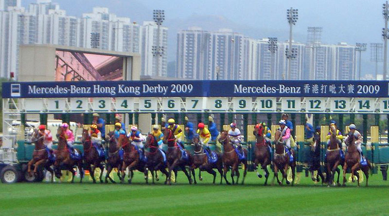 Horses were more likely to favour their left leg when starting a race on a clockwise course, researchers found.