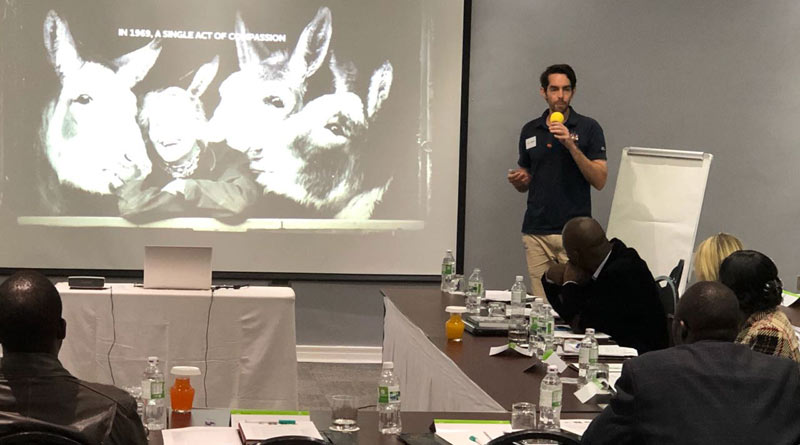Alex Mayers, head of programmes at The Donkey Sanctuary, addresses the Bulawayo skin trade conference.